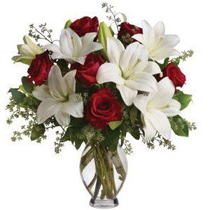 Elegant Love Lilly's roses