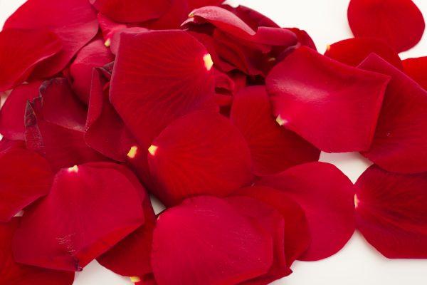 Bag of rose petals